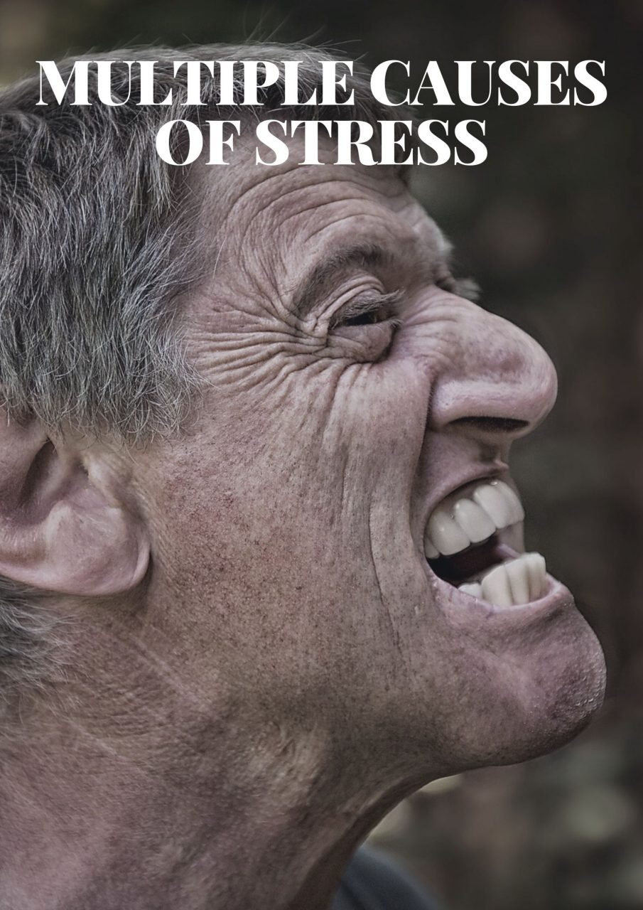 Multiple Causes of Stress